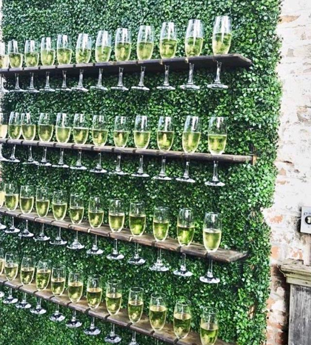Where to find Boxwood Champagne Wall in Plymouth